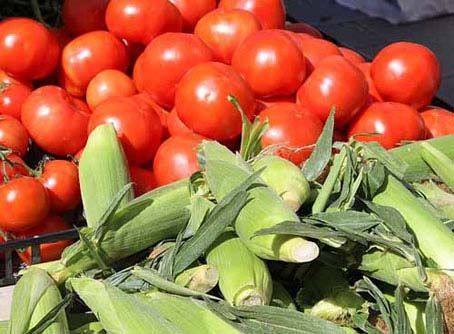 Florida Agricultural Products are ready for sale