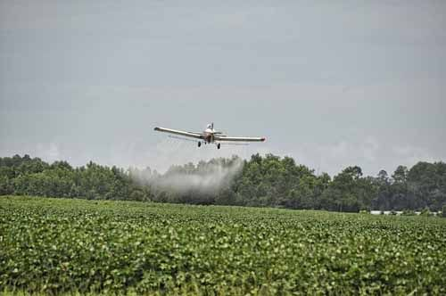 A crop duster sprays pesticide on a field