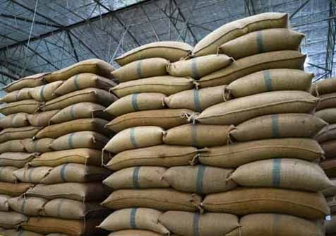 Bags of grain are stored in a warehouse