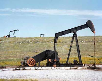 oil pumps in a field